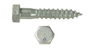 Image of Lag Screws and Studs