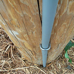 Image of Ground Wire Molding